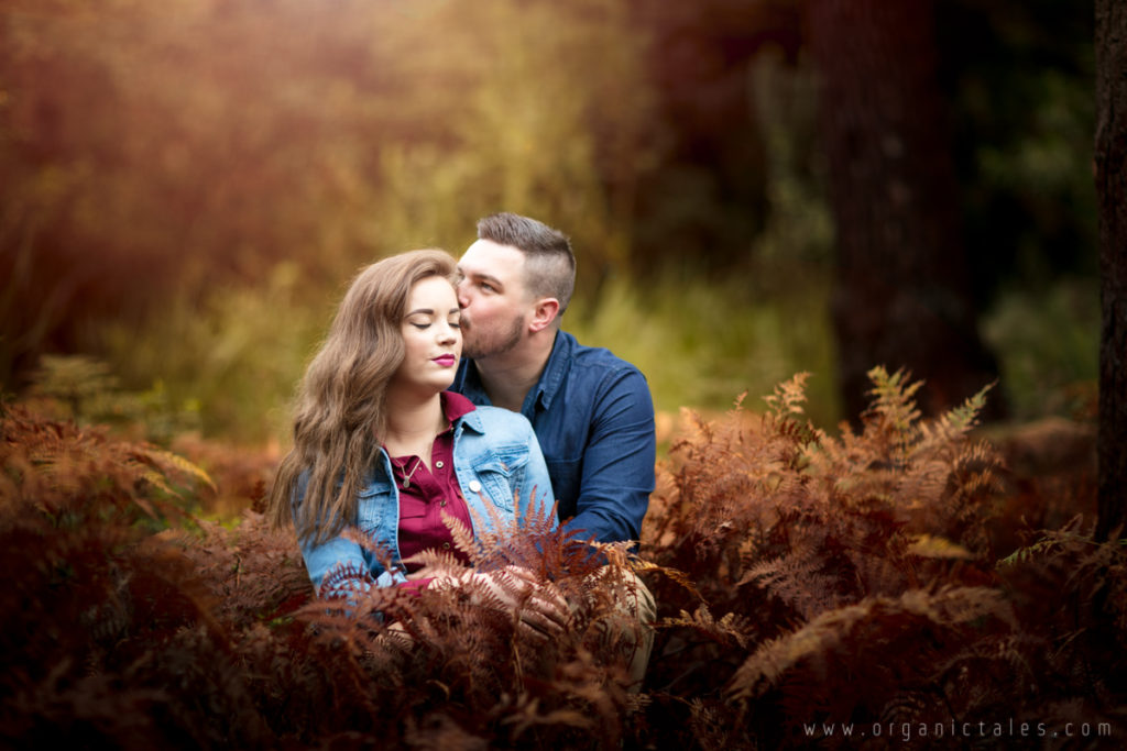 Rainy Forest Engagement