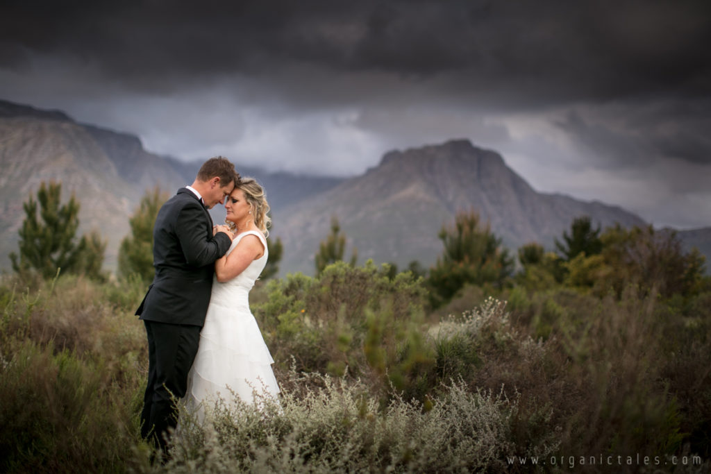 Forest44 Stellenbosch Wedding