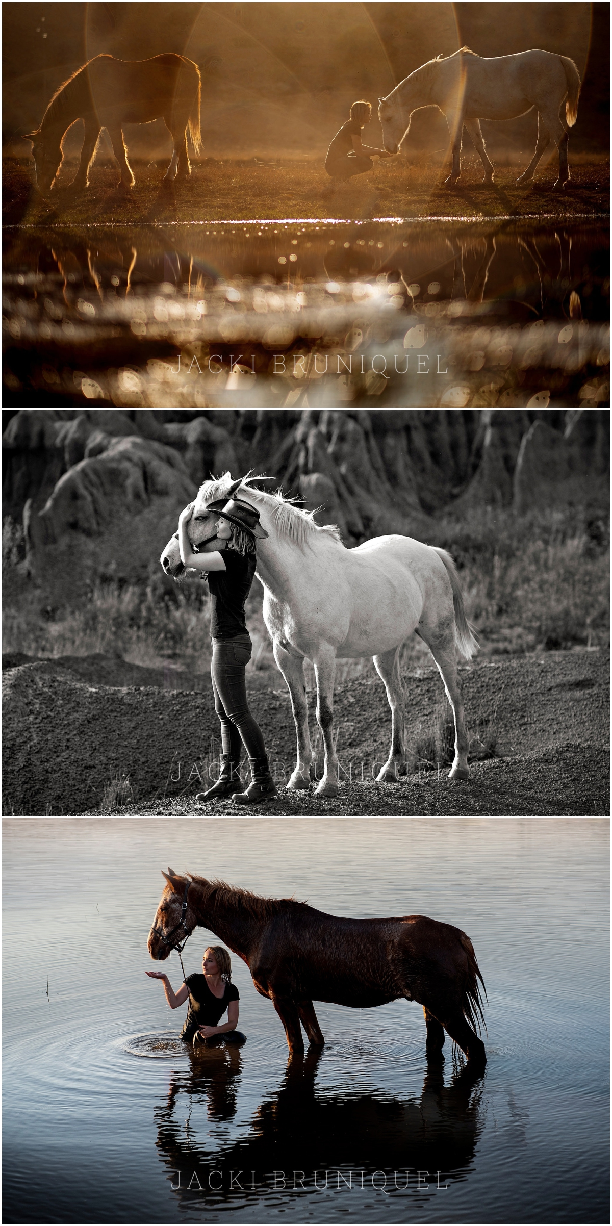 Horse Portraits by Jacki Bruniquel